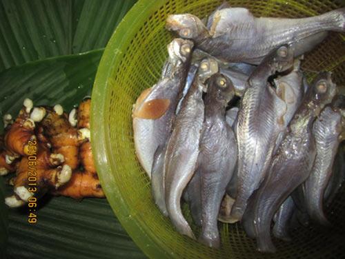 Cá chốt Bạc Liêu - 1