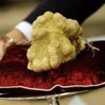 Ẩm thực - Top 10 đồ ăn đắt nhất hành tinh