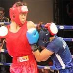"""Thể thao - Cuộc chiến nảy lửa của các """"chân dài"""" boxing Việt"""