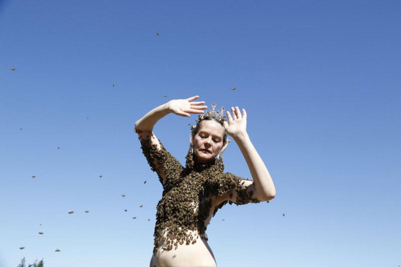 Ảnh ấn tượng: Nghệ sĩ khiêu vũ với hàng nghìn con ong - 10