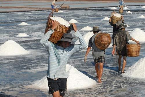 Hàng loạt đặc sản nông nghiệp bị mất giá - 3
