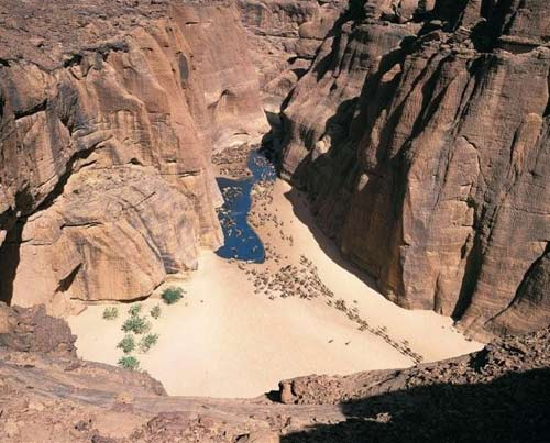 """""""Khách sạn"""" của lạc đà giữa sa mạc Sahara - 11"""