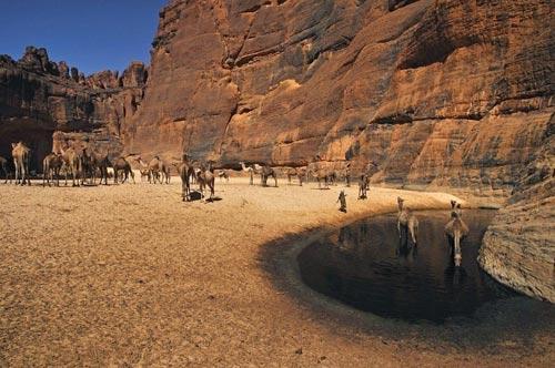 """""""Khách sạn"""" của lạc đà giữa sa mạc Sahara - 2"""