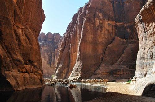 """""""Khách sạn"""" của lạc đà giữa sa mạc Sahara - 6"""