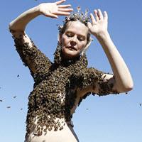 Video: Che mình trần bằng 12.000 con ong