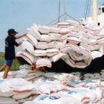 Thị trường - Tiêu dùng - Hoang mang khi Trung Quốc nhập mạnh gạo Việt Nam