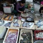 Thị trường - Tiêu dùng - Mực da bong, râu rụng giá 10.000 đồng/lạng ở Hà Nội