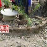 An ninh Xã hội - Lật lại kỳ án chồng giết vợ rồi vùi xác dưới giếng sâu
