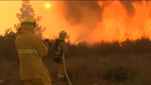 Mỹ: 20.000 người phải di tản vì cháy rừng - 3