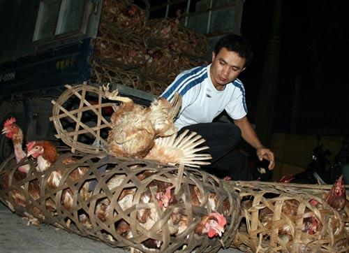 Hàng thải loại, nhiễm độc Trung Quốc tràn lan chợ Việt - 11