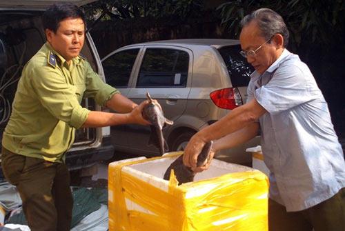Hàng thải loại, nhiễm độc Trung Quốc tràn lan chợ Việt - 3