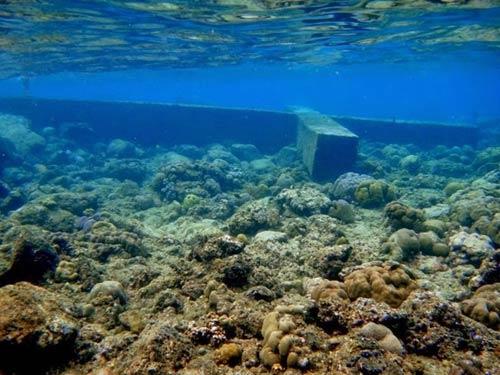Độc đáo nghĩa trang dưới dưới biển ở Philippines - 3