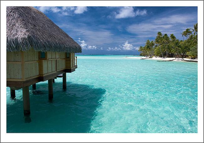 Đặc biệt Bora Bora còn nổi tiếng với những loài cá nhiệt đới đầy màu sắc khiến nơi đây trở thành thiên đường cho những ai yêu thích lặn biển. Bên cạnh đó là những căn biệt thự lãng mạn với mái tranh được thiết kế vô cùng độc đáo tạo nên sự pha trộn hài hòa giữa cảnh vật thiên nhiên xung quanh.