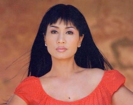 5 mỹ nhân tên Hà nổi danh làng nhạc Việt - 5
