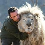 Bóng đá - Rùng mình với clip chơi bóng cùng 3 con sư tử