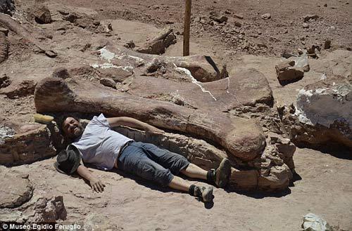 Phát hiện hóa thạch khủng long cao bằng tòa nhà 7 tầng - 2