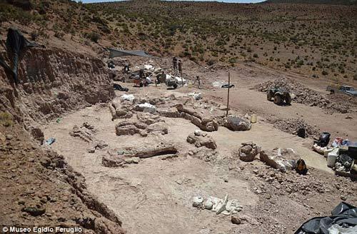 Phát hiện hóa thạch khủng long cao bằng tòa nhà 7 tầng - 4