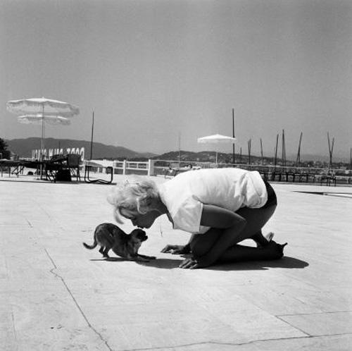 Những khoảnh khắc lịch sử tại LHP Cannes - 13