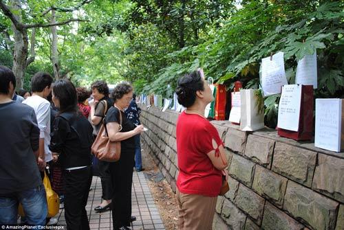 Trung Quốc: Phụ huynh xếp hàng tìm vợ, chồng cho con - 4
