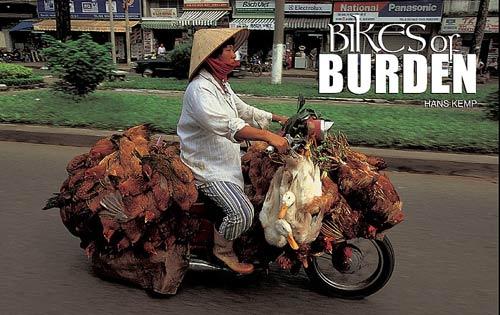 """Nhiếp ảnh gia """"Tây"""" ngỡ ngàng với xe máy ở Việt Nam - 11"""