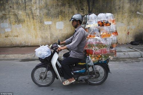 """Nhiếp ảnh gia """"Tây"""" ngỡ ngàng với xe máy ở Việt Nam - 5"""