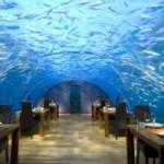 Du lịch - Ngắm vẻ đẹp nhà hàng dưới nước đầu tiên thế giới