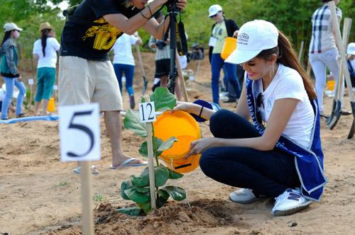 Thí sinh hoa hậu đội nắng đi trồng cây - 6