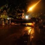 Tin tức trong ngày - Hà Nội: Cây xanh đổ ngổn ngang sau mưa lớn