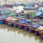 Thị trường - Tiêu dùng - Xây dựng trung tâm hậu cần nghề cá ngàn tỷ