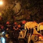 Tin tức trong ngày - Cây đổ chết người, hư tài sản ở Hà Nội: Né trách nhiệm?