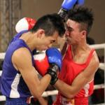 Thể thao - Giải võ Việt: Các võ sĩ Hà Nội thắng lớn