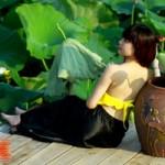 Bạn trẻ - Cuộc sống - Thiếu nữ Hà thành duyên dáng bên hoa sen