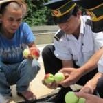 Thị trường - Tiêu dùng - Hoa quả Trung Quốc không nhập vào Lạng Sơn