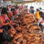 Tin tức trong ngày - TQ: Luật sư tố lễ hội thịt chó là phi pháp
