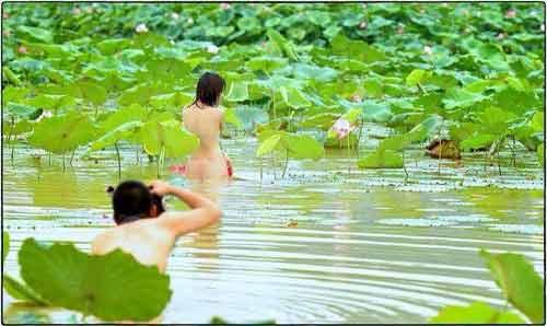 """Thiếu nữ để lộ ngực trần bên hoa sen bị """"ném đá"""" - 1"""