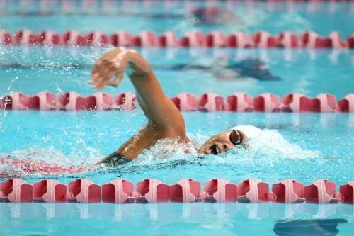 Ánh Viên, Quý Phước giành HCV bơi Đông Nam Á - 1