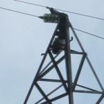 Tin tức trong ngày - Bàng hoàng phát hiện thi thể cháy đen trên cột điện