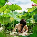 """Bạn trẻ - Cuộc sống - Thiếu nữ để lộ ngực trần bên hoa sen bị """"ném đá"""""""