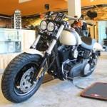 Ô tô - Xe máy - Harley-Davidson Fat Bob giá 700 triệu đồng tại VN