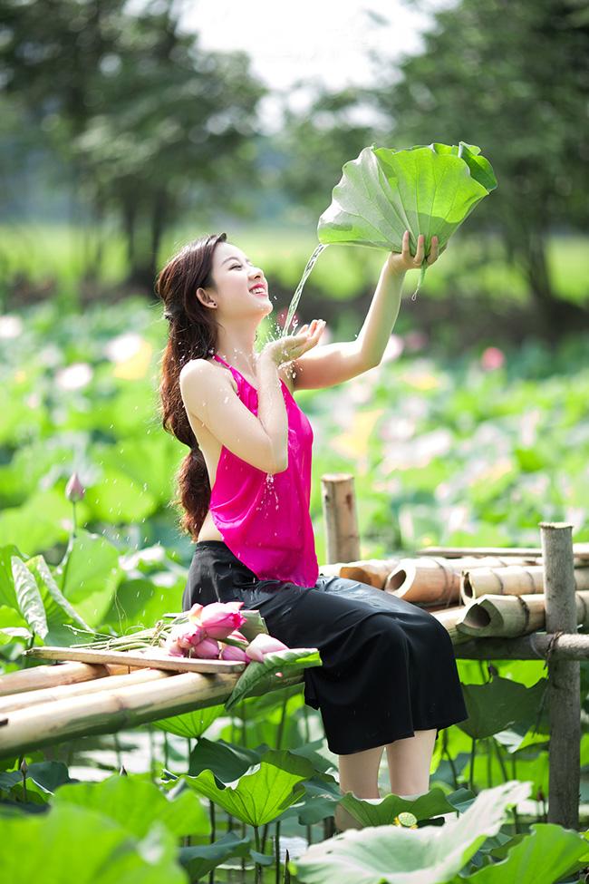 Thưởng thức hương sen thơm ngát trong buổi chiều hạ mát mẻ