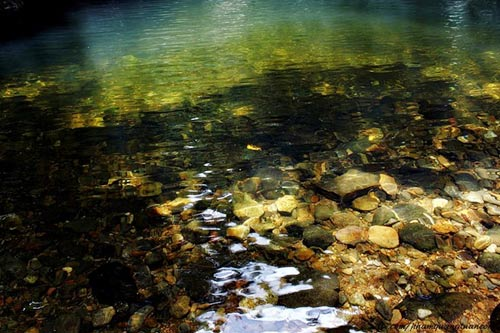 Nét hoang sơ, hùng vĩ ở vườn quốc gia Bạch Mã - 6