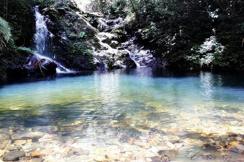Nét hoang sơ, hùng vĩ ở vườn quốc gia Bạch Mã - 7