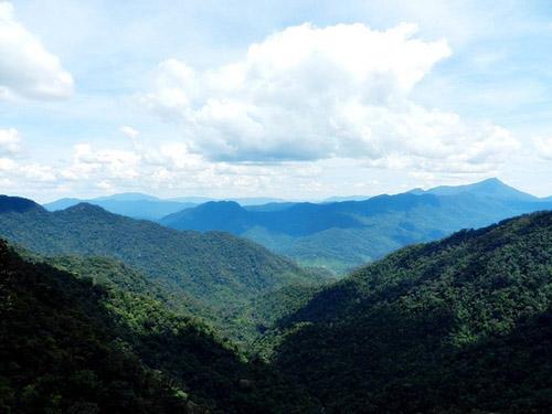 Nét hoang sơ, hùng vĩ ở vườn quốc gia Bạch Mã - 8