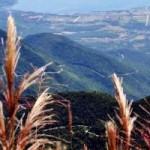 Du lịch - Nét hoang sơ, hùng vĩ ở vườn quốc gia Bạch Mã