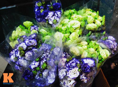 Lung linh sắc hoa chợ đêm Quảng Bá - 12