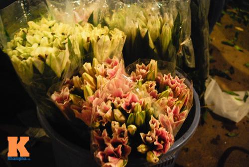 Lung linh sắc hoa chợ đêm Quảng Bá - 2