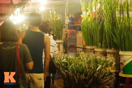 Lung linh sắc hoa chợ đêm Quảng Bá - 8
