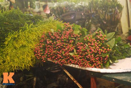 Lung linh sắc hoa chợ đêm Quảng Bá - 9