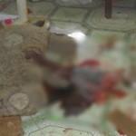An ninh Xã hội - Đâm chết vợ vì thua cá độ bóng đá