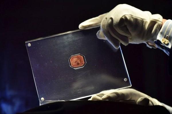 Con tem hiếm nhất thế giới 9,5 triệu USD - 1